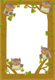 Cartoon frame scene - owl Royalty Free Stock Photos