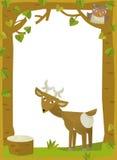 Cartoon frame scene - roe Royalty Free Stock Photo