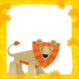 Cartoon frame - wildlife - lion Royalty Free Stock Photo