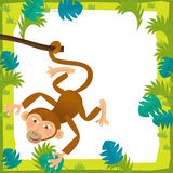 Cartoon frame - wildlife - monkey Stock Photography
