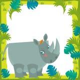 Cartoon frame - wildlife - rhino Royalty Free Stock Photos
