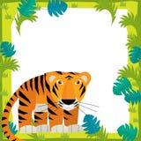 Cartoon frame - wildlife - tiger Stock Photos