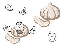 Cartoon fresh garlic bulb vegetable Stock Image