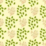 Cartoon fresh kiwi fruits slice flat style seamless pattern food summer design vector illustration. royalty free illustration