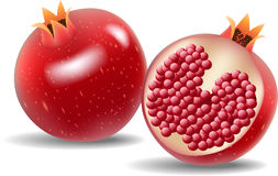 Cartoon fresh pomegranate  on white background Royalty Free Stock Photos