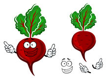 Cartoon fresh red beetroot vegetable Stock Photography