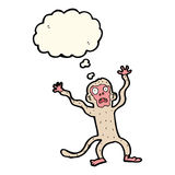 cartoon frightened monkey with thought bubble Royalty Free Stock Photo