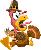 Cartoon Frightened Turkey Escaping Thanksgiving Day Royalty Free Stock Photos