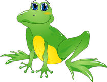 Cartoon frog. Green cartoon frog sits & smiles.Vector illustration Stock Image