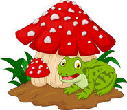 Cartoon frog basking under mushrooms Royalty Free Stock Image
