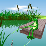 Cartoon frog. Fishing in the lake during the day Royalty Free Stock Images
