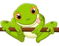 Cartoon frog holding tree Royalty Free Stock Photo