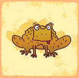 Cartoon frog illustration , vector icon Royalty Free Stock Photography