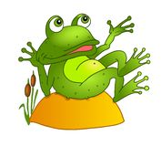 Cartoon frog lying on a rock Royalty Free Stock Images