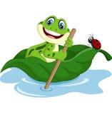 Cartoon frog paddle leave Stock Image