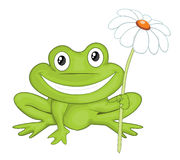 Cartoon frog Stock Images