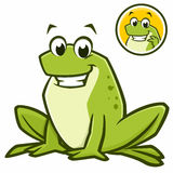 Cartoon Frog. Vector illustration of a cartoon green frog for design element Stock Photo