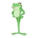 Cartoon Frog Stock Image