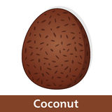 Cartoon Fruit - Big Brown Coconut Royalty Free Stock Images