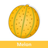 Cartoon Fruit - Big Yellow Melon Stock Photo