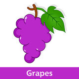 Cartoon Fruit - Bunch of Grapes with Leaf Stock Photo