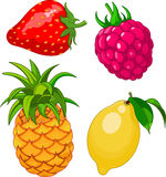 Cartoon fruit set Stock Photos