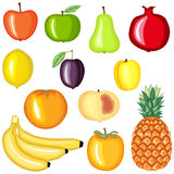 Cartoon fruit set. Cartoon colorful image fruit set Stock Image