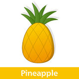 Cartoon Fruit - Yellow Pineapple with Leaves Stock Photo