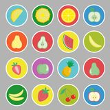 Cartoon fruits, berries and vegetables icons, labels. Vector illustration Royalty Free Stock Images