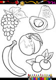 Cartoon fruits set for coloring book Royalty Free Stock Photos
