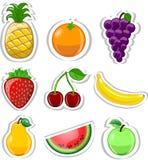 Cartoon fruits ,vector Royalty Free Stock Image