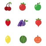 Cartoon fruits in vector. Cherry tomato apple strawberry grape radish lemon watermelon pumpkin royalty free illustration