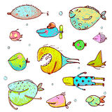 Cartoon Fun Humorous Fish Drawing Collection Royalty Free Stock Photography