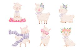 Free Cartoon Funny Alpaca Or Lama Character Wearing Floral Wreath Sitting In Yoga Pose And Standing Vector Set Stock Images - 176878074