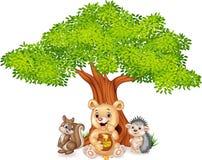 Cartoon funny animal on the tree Stock Image