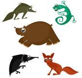 Cartoon funny animals Stock Image