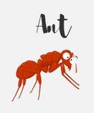 Cartoon Funny Ant Stock Photography