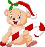 Cartoon funny baby bear holding Christmas candy Stock Photo