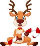 Cartoon funny baby bear holding Christmas candy Stock Image