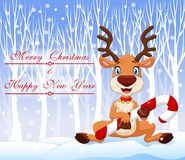 Cartoon funny baby bear holding Christmas candy with winter background Stock Photos