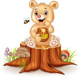 Cartoon funny baby bear holding honey pot on tree stump Royalty Free Stock Images
