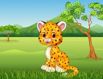Cartoon funny baby cheetah in the jungle Royalty Free Stock Photography