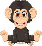 Cartoon funny baby chimpanzee sitting  on white background Royalty Free Stock Photos