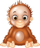 Cartoon funny baby orangutan  on white background Royalty Free Stock Images