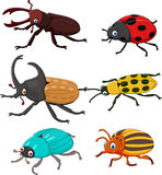 Cartoon funny beetle collection Stock Photo