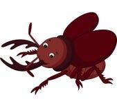 Cartoon funny beetle. Illustration of cartoon funny beetle Stock Images