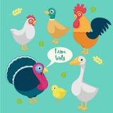 Cartoon funny birds farm. Set of the cartoon, funny birds farm, turkey, rooster, duck, goose, chicken and chicken, chicken farm.Vector Illustration. on white Stock Photos