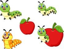 Cartoon funny Caterpillar collection set Royalty Free Stock Photography
