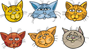 Cartoon funny cats heads set Royalty Free Stock Image
