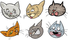 Cartoon funny cats heads set Stock Image
